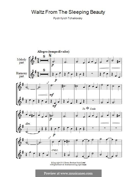 Walzer: Für zwei Blockflöten by Pjotr Tschaikowski