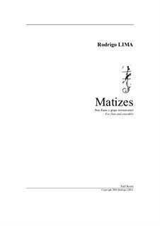 Matizes for flute and ensemble: Matizes for flute and ensemble by Rodrigo Lima