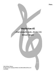 Meditation No.2, 100002: Meditation No.2 by Michael Weaver
