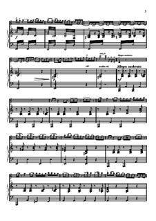 Concertino in A Minor for Violin and Piano in Hungarian style, Op.21: Partitur für zwei Interpreten, Solostimme by Oskar Rieding