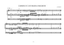 Work for Organ No.6 'Ave regina coelorum', MVWV 299: Work for Organ No.6 'Ave regina coelorum' by Maurice Verheul