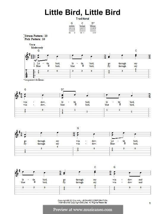 Little Bird, Little Bird: Für Gitarre mit Tabulatur by folklore