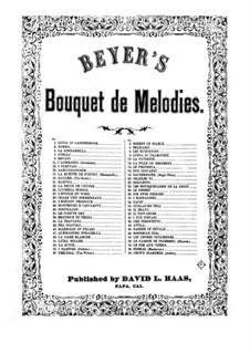 Bouquet de Mélodies, Op.42: I Puritani by Ferdinand Beyer