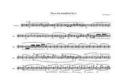 Piece for electric Mandolin 'mandocastor', MVWV 213: Piece for electric Mandolin 'mandocastor' by Maurice Verheul