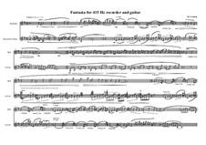 Duo No.16 Fantasia for Recorder (415 Hz) and Guitar: Duo No.16 Fantasia for Recorder (415 Hz) and Guitar by Maurice Verheul