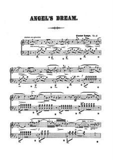 Angel's Dream, Op.36: Für einen Interpreten by Gustav Lange