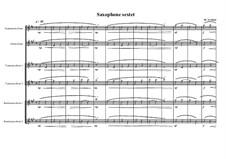 Saxophone sextet, MVWV 550: Saxophone sextet by Maurice Verheul