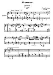 Studies for Piano, CS212: Nr.2 in G-Dur by Santino Cara