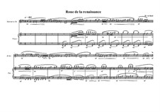 Duo No.17 for Clarinet in Bb and Piano, MVWV 604: Duo No.17 for Clarinet in Bb and Piano by Maurice Verheul