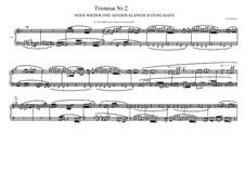 Tristesse No.2 for piano, MVWV 501: Tristesse No.2 for piano by Maurice Verheul