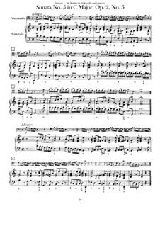Sechs Sonaten für Cello (oder Bratsche) und Basso Continuo, Op.1: Sonate Nr.5 by Benedetto Marcello