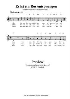 Es ist ein Ros entsprungen: For unison voices and guitar chords by Michael Praetorius