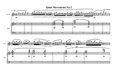 Quiet Movements: No.2 for piccolo and piano, MVWV 607 by Maurice Verheul