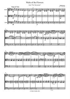 Nr.8 Blumenwalzer: For string trio – parts by Pjotr Tschaikowski