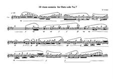 10 viam somnia for flute solo: Nr.7, MVWV 526 by Maurice Verheul