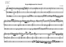 Work for Organ No.10 'In prodigiosum iter insecti', MVWV 326: Work for Organ No.10 'In prodigiosum iter insecti' by Maurice Verheul