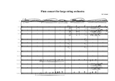 Flute concerto with divided large string orchestra, MVWV 348: Flute concerto with divided large string orchestra by Maurice Verheul
