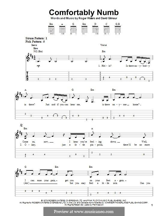 Comfortably Numb (Pink Floyd): Für Gitarre mit Tab by David Gilmour, Roger Waters