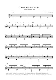 Jugar Con Fuego, Op.244: Jugar Con Fuego by Berndt Leopolder