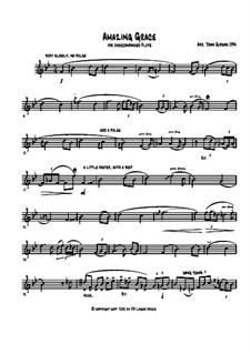 Erstaunliche Gnade, für Ein Instrument: Für Flöte by folklore