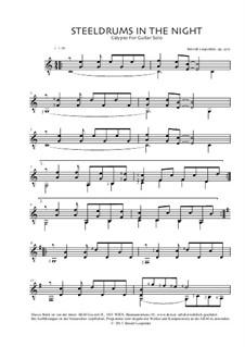 Steeldrums In The Night, Op.270: Steeldrums In The Night by Berndt Leopolder