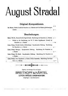 Eine Symphonie zu Dante's Divina Commedia, S.109: Für Klavier by Franz Liszt