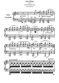Nr.12 Am Meer: Für Klavier, S.560 No.4 by Franz Schubert