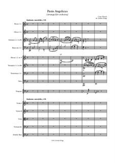 Panis angelicus: Für Orchester by César Franck