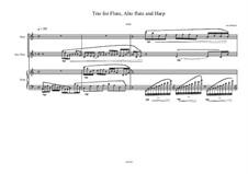 Trio No.14 for Flute, Alto flute and Harp, MVWV 498: Trio No.14 for Flute, Alto flute and Harp by Maurice Verheul