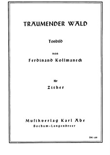 Träumender Wald: Träumender Wald by Ferdinand Kollmaneck