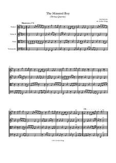 The Minstrel Boy (The Moreen): Für Streichquartett by folklore