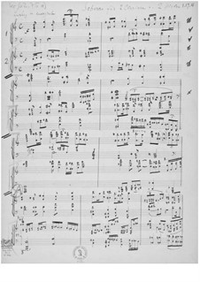 Scherzo für zwei Klaviere und zwei Spieler: Scherzo für zwei Klaviere und zwei Spieler by Ernst Levy