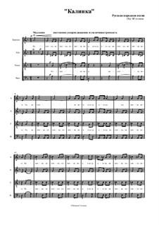 Kalinka: Fo mixed choir by Ivan Larionov