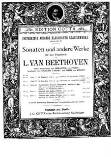 Sonate für Klavier Nr.28, Op.101: Für einen Interpreten (Herausgegeben von H. Bülow) by Ludwig van Beethoven