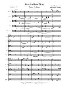 Buachaill On Eirne: Für Streichorchester by folklore