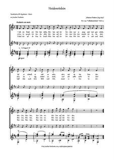 Volkskinderlieder, WoO 31: Nr.6 Heidenröslein, für Stimme und Gitarre by Johannes Brahms