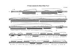 3 viam somnia for bass flute: Nr.3, MVWV 758 by Maurice Verheul
