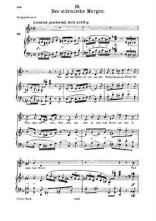 Nr.18 Der stürmische Morgen: Für Mittelstimme und Klavier by Franz Schubert