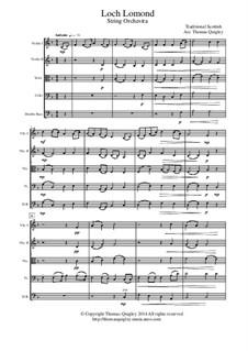 Loch Lomond: Für Streichorchester by folklore