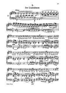 Nr.5 Der Lindenbaum: Für hohe Stimme und Klavier by Franz Schubert