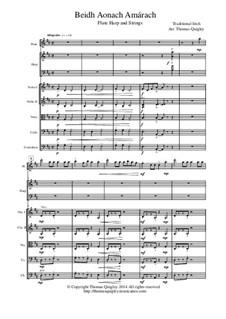Beidh Aonach Amarach: For large ensemble (flute, harp, strings) by folklore