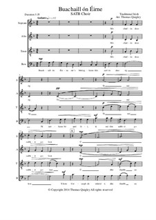 Buachaill On Eirne: SATB choir by folklore