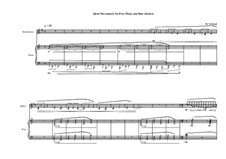Quiet Movements: No.8 for piano and bass clarinet, MVWV 613 by Maurice Verheul