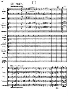 Sinfonie Nr.5 in B-Dur, WAB 105: Teil III by Anton Bruckner