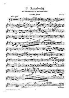 Ein Sennenbesuch: Solostimme by Ole Bull