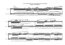 A view seconds motif No.1 for Alto Saxophone and Tenor Saxophone, MVWV 792: A view seconds motif No.1 for Alto Saxophone and Tenor Saxophone by Maurice Verheul