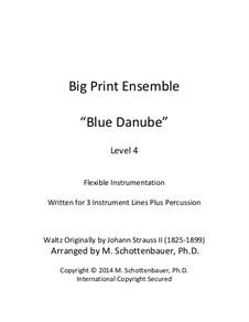 An der schönen blauen Donau, Op.314: For flexible instrumentation by Johann Strauss (Sohn)