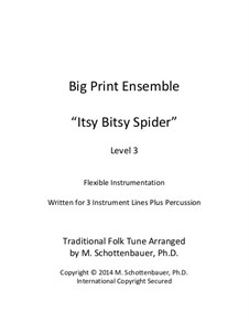 Big Print Ensemble: Level 3: Itsy Bitsy Spider for flexible instrumentation by folklore