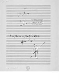 Im Korn für eine Bass-Stimme mit Klavierbegleitung: Im Korn für eine Bass-Stimme mit Klavierbegleitung by Ernst Levy