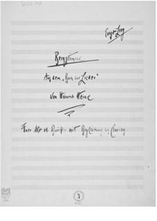 Bergstimme für Altstimme oder Bariton mit Klavierbegleitung: Bergstimme für Altstimme oder Bariton mit Klavierbegleitung by Ernst Levy